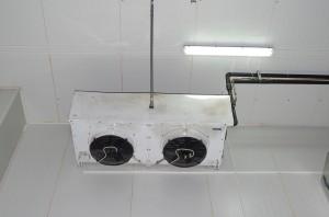 IMGP2897