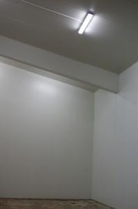 IMGP2903